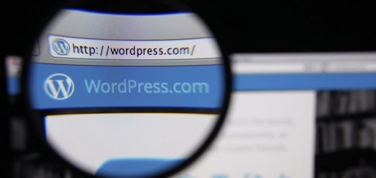 Extend User Contact Info in WordPress without a Plugin