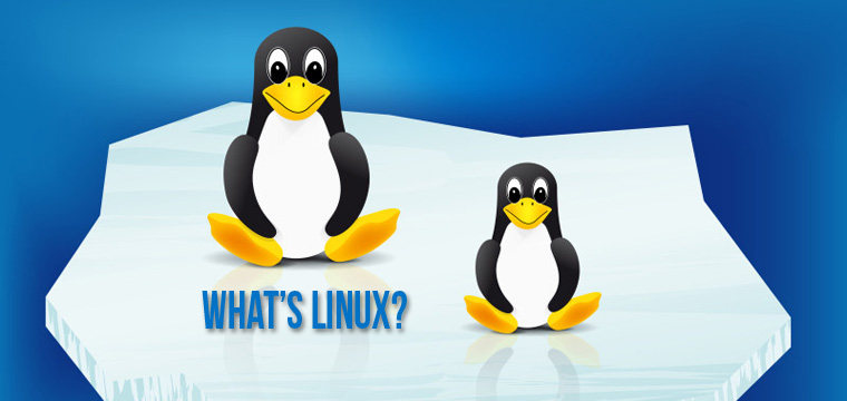 What Does Linux Mean to You?